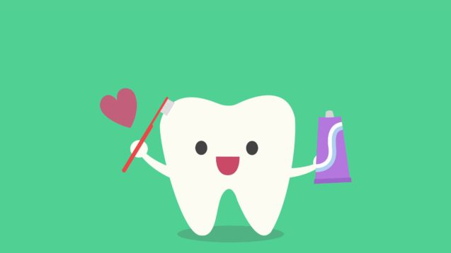 What is a Tooth? What is it Made Of?